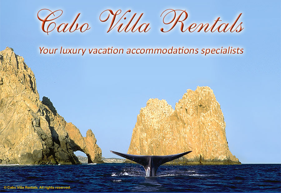 Cabo Villa Rentals - Luxury Rental Accommodations in Cabo San Lucas and the East Cape, Baja California Sur, Mexico