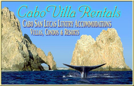 Cabo Villa Rentals Luxury Accommodations in Los Cabos and the East Cape!