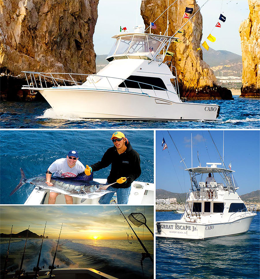 Cabo san lucas sportfishing pisces for Fishing in cabo
